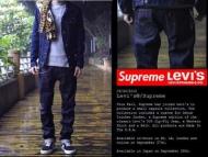 シュプリーム デニムパンツ SupremexLevis ダメージジーンズ メンズ ブルー 新作 スキニーパンツ ヒョウ柄