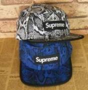 個性派シュプリーム帽子 偽物ボックスロゴキャップSUPREMEオンラインゴルフスポーツヒョウ柄ブルー2色可選