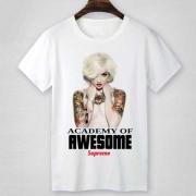 SUPREME シュプリーム tシャツ サイズ感 ACADEMY OF RWESOME 半袖Tシャツ ホワイト グレー クルーネック プリント